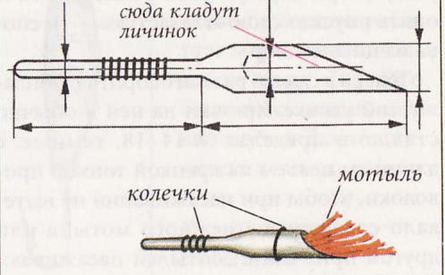 instrument-motila